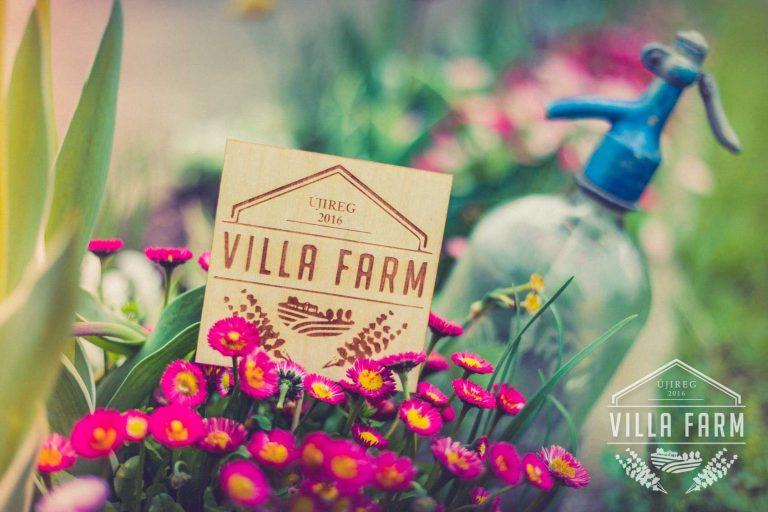 VillaFarm-Resort_046.jpg